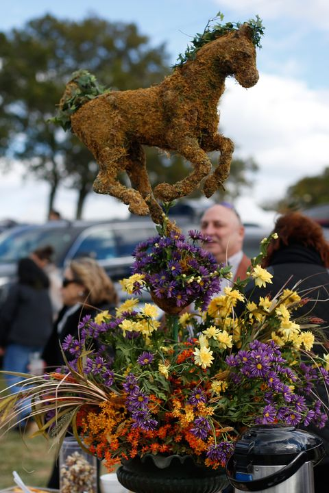 Flowerpot, Flower, Bouquet, Horse, Floristry, Stallion, Flower Arranging, Mustang horse, Pack animal, Cut flowers,