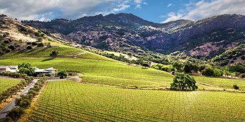 Nature, Mountainous landforms, Plant, Agriculture, Highland, Farm, Landscape, Natural landscape, Field, Mountain,