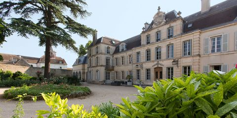 Window, Leaf, Building, Shrub, Mansion, Palace, Plantation, Estate, Sash window, Hemp family,