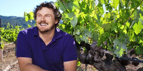 Shirt, Collar, Agriculture, Leaf, Beard, People in nature, Facial hair, Seedless fruit, Grape leaves, Grapevine family,