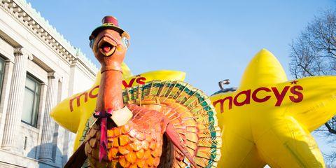 Beak, Holiday, Bird, Chinese new year,