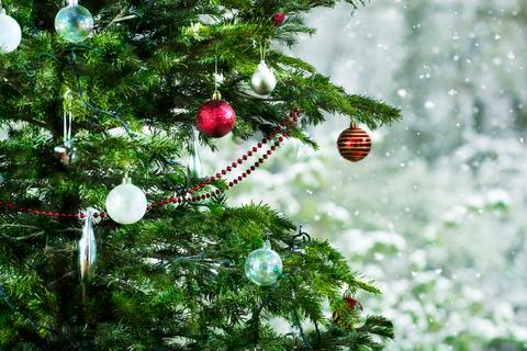 Event, Christmas decoration, Branch, Christmas ornament, Holiday ornament, Holiday, Woody plant, Christmas, Biome, Ornament,