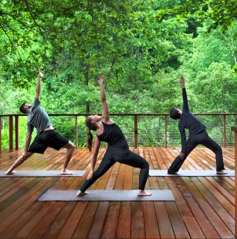 Wood, People in nature, Physical fitness, Wood flooring, Active pants, Waist, Exercise, Hardwood, Laminate flooring, Balance,