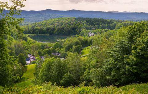 Vegetation, Nature, Natural landscape, Plant, Mountainous landforms, Plant community, Landscape, Tree, Shrub, Highland,