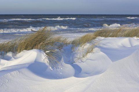Natural environment, Coastal and oceanic landforms, Winter, Fluid, Sand, Ocean, Wind, Horizon, Azure, Wave,