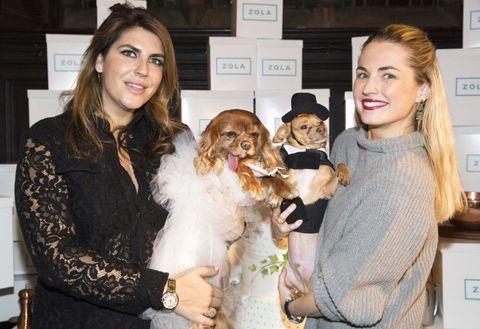 Human, Smile, Carnivore, Dog, Dog breed, Fashion accessory, Brown hair, Companion dog, Fur, Watch,