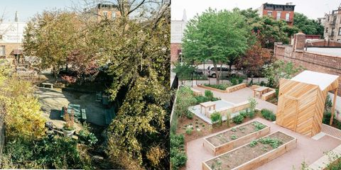 Property, Neighbourhood, Landscape, Shrub, Garden, Real estate, Residential area, Urban design, Groundcover, Yard,