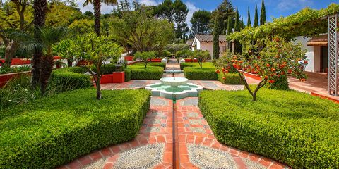 Plant, Garden, Shrub, Landscape, Walkway, Hedge, Water feature, Arecales, Landscaping, Groundcover,