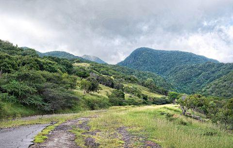 Vegetation, Mountainous landforms, Highland, Natural landscape, Hill, Plant community, Mountain range, Valley, Mountain, Hill station,