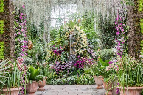 Flowerpot, Plant, Garden, Flower, Shrub, Purple, Flowering plant, Lavender, Botany, Terrestrial plant,