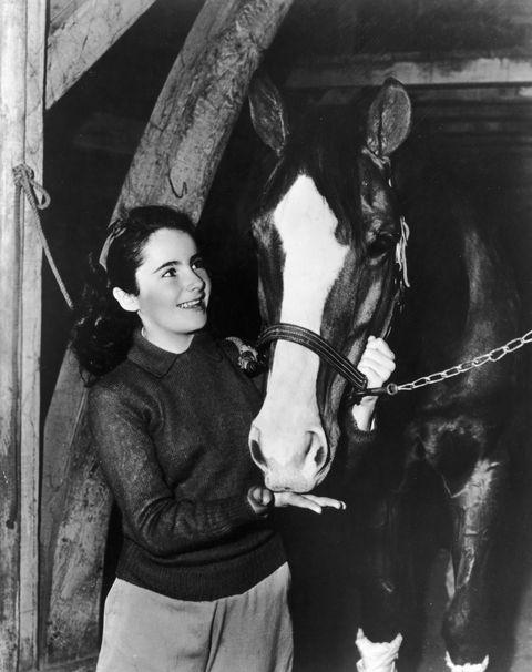 <p>Feeding a horse for director Clarence Brown's film <em>National Velvet </em>in 1944.</p>