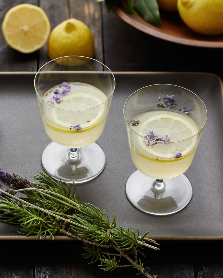 Easy Classic Gin Drink Recipes