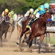 Human, Jockey, Halter, Bridle, Shoe, Horse, Horse supplies, Horse tack, Rein, Animal sports,