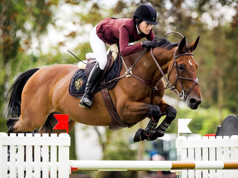 famous show jumpers