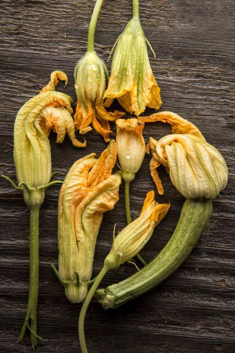 Yellow, Flower, Botany, Flowering plant, Terrestrial plant, Petal, Spring, Plant stem, Whole food, Natural foods,