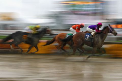 Jockey, Sport venue, Race track, Animal sports, Racing, Mammal, Flat racing, Equestrian sport, Sports, Organ,