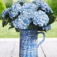 Tory Burch Blue and White Pitcher