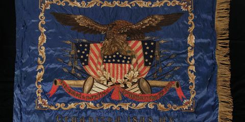 Textile, Accipitridae, Bird of prey, Accipitriformes, Wing, Linens, Electric blue, Symbol, Majorelle blue, Rectangle,