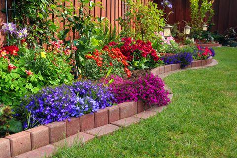 Colorful formal garden