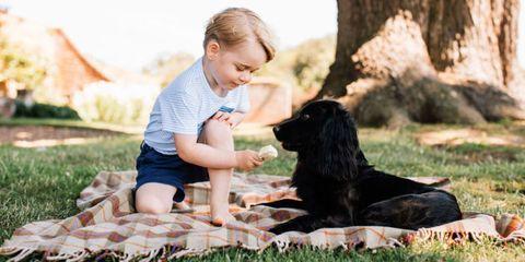 Dog breed, Human, Dog, Sitting, Mammal, Carnivore, Sporting Group, People in nature, Companion dog, Gun dog,