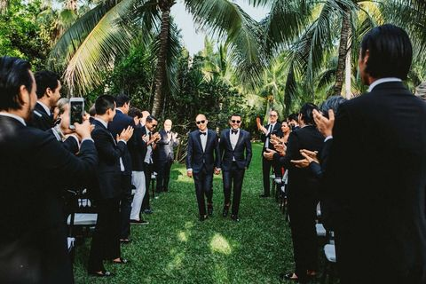 Formal wear, Suit, Arecales, Ceremony, Palm tree, Official, Tuxedo,