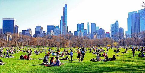 Tower block, Grass, City, Metropolitan area, Urban area, Public space, Leaf, Tower, Metropolis, Cityscape,