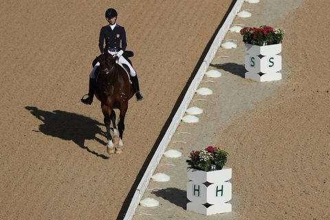 Human, Horse, Horse tack, Bridle, Flowerpot, Equestrianism, Halter, Saddle, Working animal, English riding,