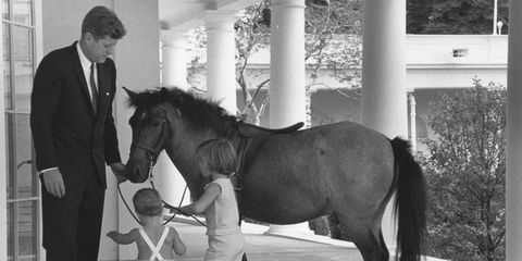 jfk and pony