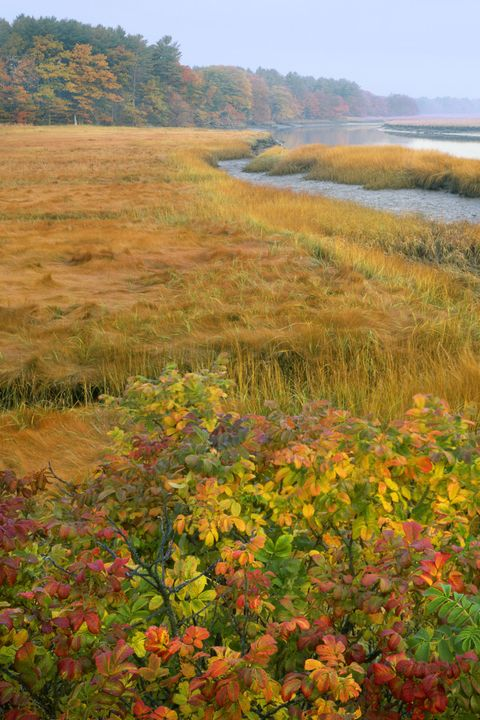 fall beach vacation ideas: kennebunkport, maine