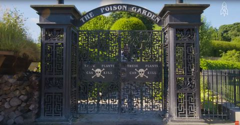 Iron, Gate, Arch, Metal, Symmetry, Building material, Landscaping, Memorial,