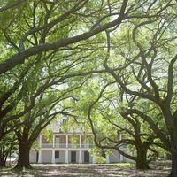 "<p>One of the few Southern plantations to focus on the slave experience, The Whitney Plantation uses&nbsp&#x3B;hundreds of first-person narratives to paint a picture of what life was really like for Louisiana's enslaved population.&nbsp&#x3B;</p><p>A guided tour of the property takes visitors through the historic Antioch Baptist Church, the slave quarters, and the Big House, focusing on the lives of the men and women who lived and worked there.<span class=""redactor-invisible-space"" data-verified=""redactor"" data-redactor-tag=""span"" data-redactor-class=""redactor-invisible-space""></span><br></p><p>For more information, visit <a href=""http://www.whitneyplantation.com/"" target=""_blank"">whitneyplantation.com</a>.&nbsp&#x3B;</p>"