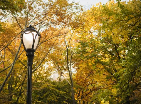How To Read The Secret Code Hidden On Central Park S Lamp