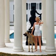 Dog breed, Column, Dog, Carnivore, Sporting Group, Companion dog, Fawn, Sculpture, Molding, Working animal,