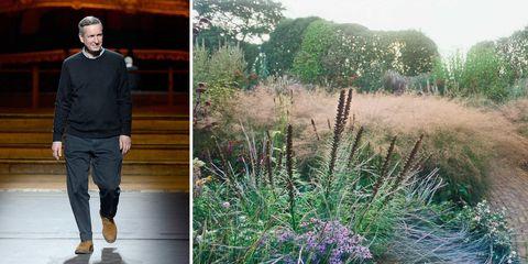 Plant, Sleeve, Trousers, Plant community, Jeans, Shrub, Denim, Lavender, Grass family, Flowering plant,