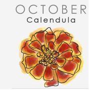 Yellow, Text, Petal, Flower, Purple, Violet, Amber, Font, Pattern, Rectangle,