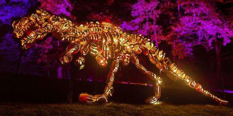 Night, Terrestrial animal, Extinction, Light, Sculpture, Darkness, Magenta, Dinosaur, Pack animal, Tyrannosaurus,