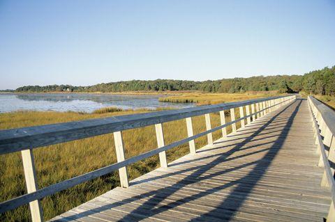 Natural landscape, Bank, Walkway, Nature reserve, Guard rail, Channel, Boardwalk, Reservoir, Bridge, Fluvial landforms of streams,