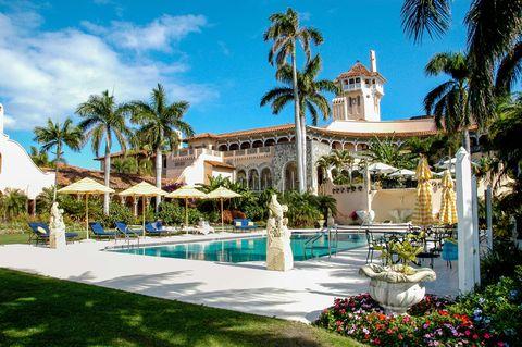 Plant, Property, Tree, Real estate, Arecales, Woody plant, Resort, Garden, Umbrella, Shade,