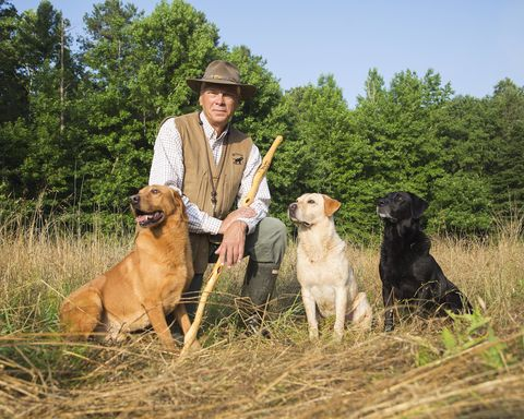 Best Dog Breeders Best Places To Buy Dogs And Puppies