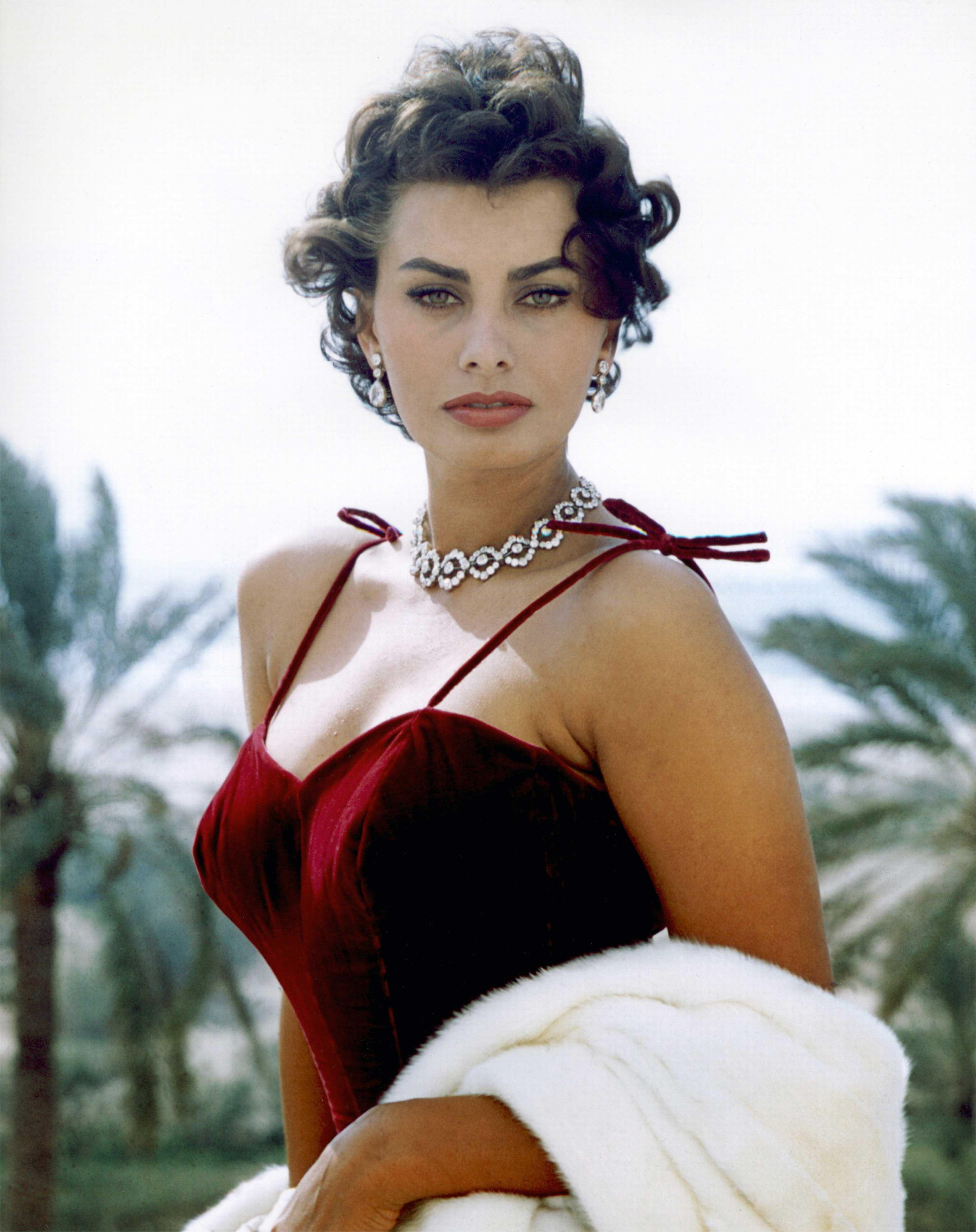 The Inspiring Evolution of Sophia Loren