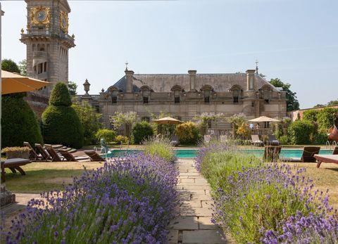 Garden, Lavender, Flower, Lavender, Plant, Building, Estate, Botany, Architecture, English lavender,
