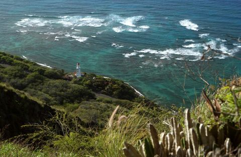 Vegetation, Coastal and oceanic landforms, Water, Plant community, Coast, Ocean, Sea, Shore, Bay, Beach,