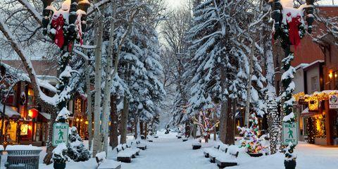 Snow, Winter, Tree, Street light, Lighting, Freezing, Town, Yellow, Urban area, Street,