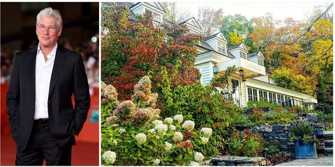 Plant, Flower, Garden, Tree, Botany, Floristry, Shrub, Autumn, House, Landscaping,