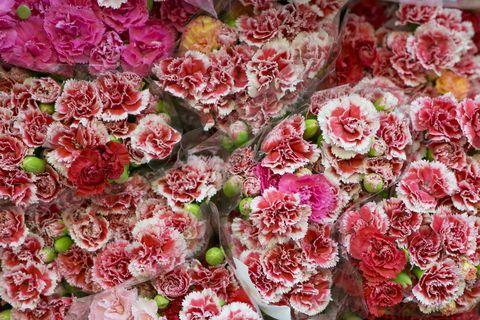 Red, Pink, Flower, Petal, Flowering plant, Floristry, Cut flowers, Artificial flower, Flower Arranging, Floral design,