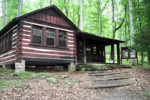 Wood, Property, Tree, House, Log cabin, Roof, Real estate, Woody plant, Rural area, Forest,