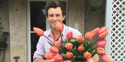 Floristry, Flower Arranging, Floral design, Flower, Bouquet, Plant, Art, Anthurium, Creative arts, Tulip,