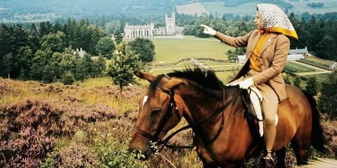 Horse, Outdoor recreation, Trail riding, Rein, Wilderness, Pack animal, Bridle, Recreation, Equestrianism, Rural area,