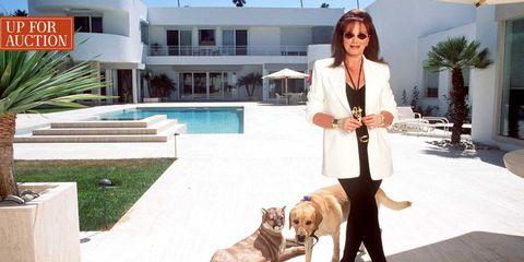 Dog, Canidae, Companion dog, Carnivore, Leash, Dog walking, Sporting Group, Real estate, Vacation, Dog breed,