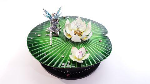 Leaf, Flower, Flowering plant, Botany, Terrestrial plant, Passion flower family, Passion flower, Still life photography,